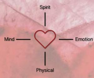heartpath-chart